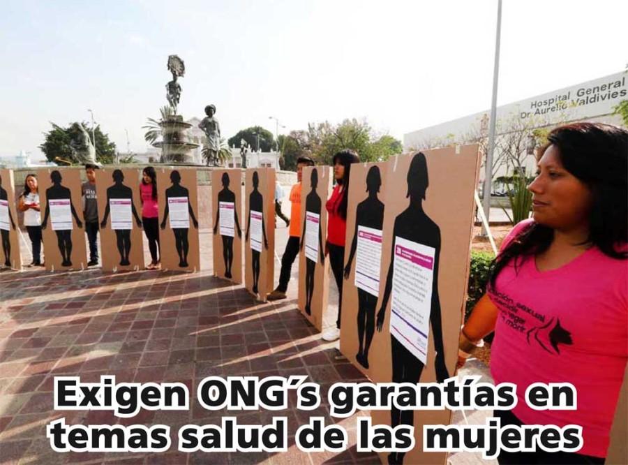Se unen ONG´s para exigir garantías en temas salud de las mujeres