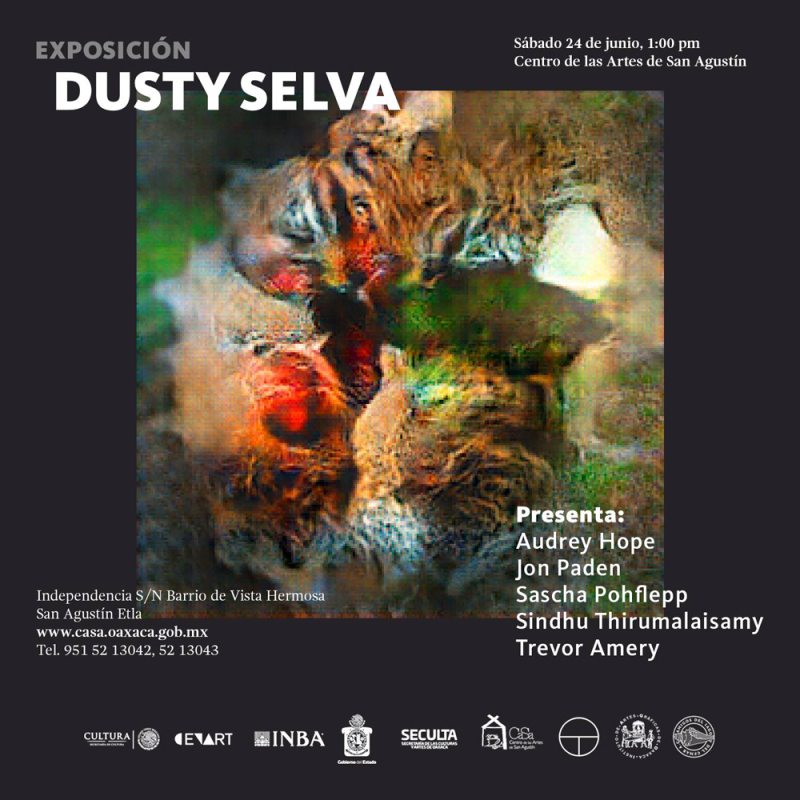 """Invita el CaSa a la inauguración de la exposición """"Dusty Selva"""""""