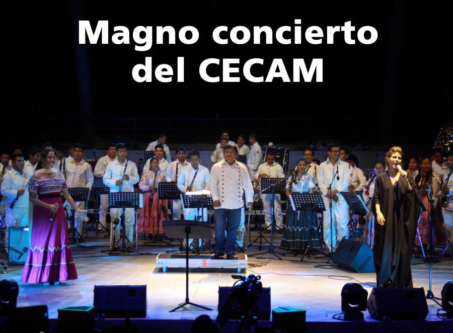 Magno concierto del CECAM