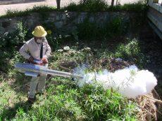 Alerta Cenaprece sobre alza en casos de dengue en Oaxaca; es una epidemia confirma su subdirector de vectores