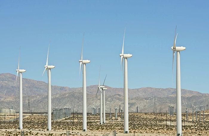 Oaxaca, líder nacional en producción de energía eólica