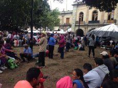 Condena Ayuntamiento de Oaxaca destrucción de 19 jardineras del zócalo