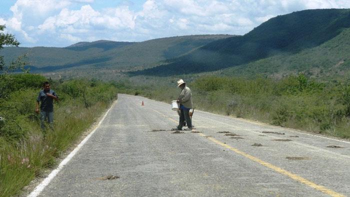 Denuncian incumplimiento para rehabilitar carretera Huajuapan - Mariscala - Diario Marca de Oaxaca