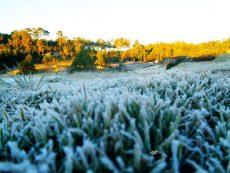 Temperaturas bajo cero en la Sierra Norte