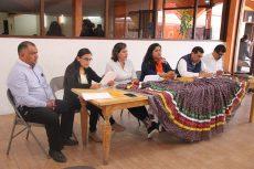 presentan criterios para seleccionar a parejas del Jarabe Mixteco