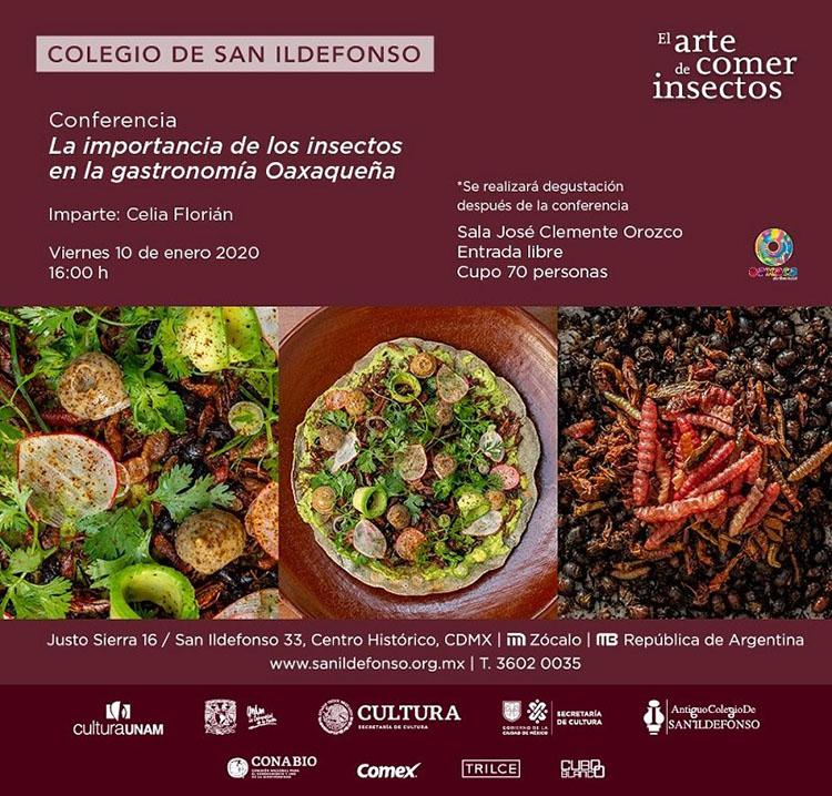 """Oaxaca presente en la exposición """"El Arte de Comer Insectos"""""""