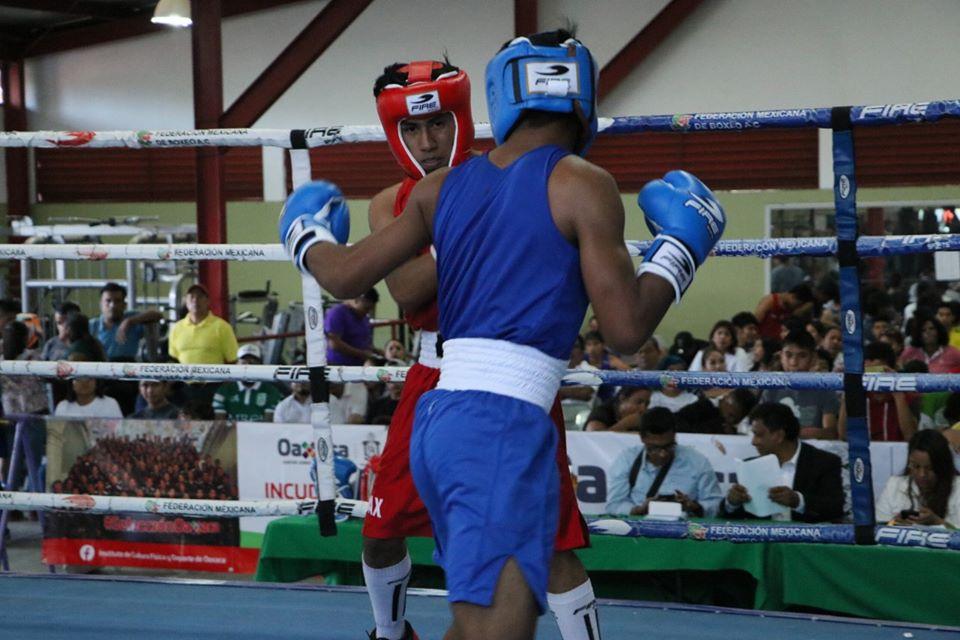 Definen selección oaxaqueña de boxeo