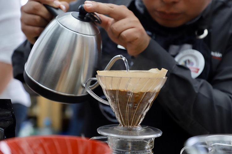Recibe Oaxaca Denominación de Origen del Café Pluma