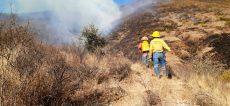 Registran 48 incendios forestales en Oaxaca en lo que va del 2020