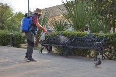 Intensifican desinfección de espacios públicos de Oaxaca de Juárez