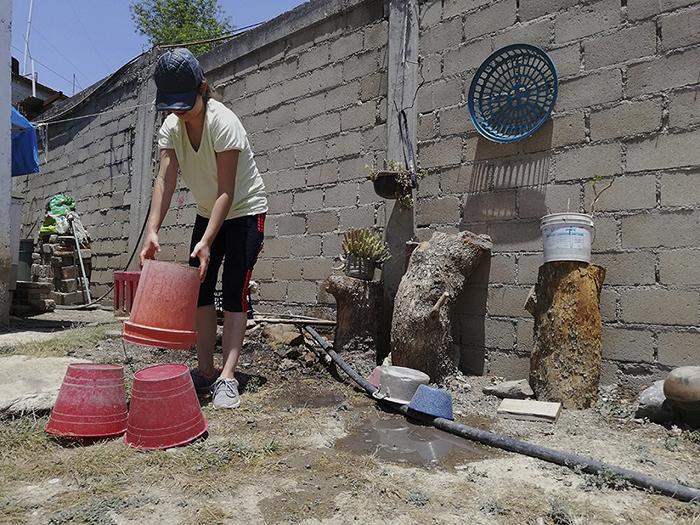 Pide SSO realizar acciones de patio limpio durante la cuarentena