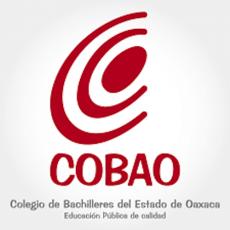 El 29 de mayo regresarán a clases estudiantes de Cobao