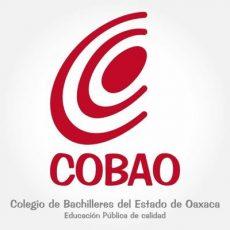 Informa Cobao que se extiende el receso escolar hasta el 30 de abril