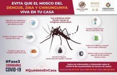 Llama Ayuntamiento de Oaxaca a sanear hogares para evitar el dengue