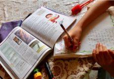 Libros de texto gratuitos, clave para el aprendizaje en casaque el IEEPO recomienda consultar