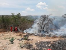 Registra Huajuapan 50 incendios al mes