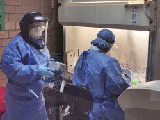 Capacita el InDRE a personal de los SSO sobre protocolos de detección de Covid-19