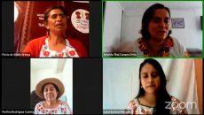 """El desarrollo """"tequios lingüísticos"""" fortalece a las comunidades donde se hablen lenguas indígenas"""