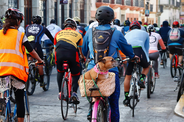Con nueva rodada, ciclistas oaxaqueños piden justicia por la muerte de sus compañeros en accidentes viales