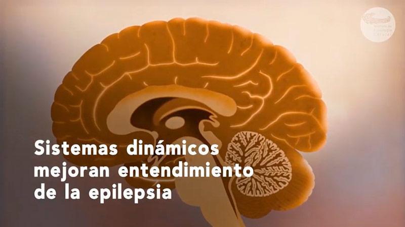 Buscan nuevos caminos para entender la epilepsia