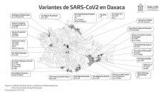 Hay 13 variantes de Covid-19 en Oaxaca: SSO